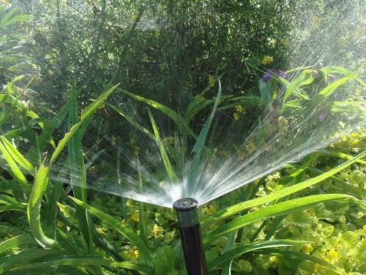 Система полива на загородном участке в Протасах